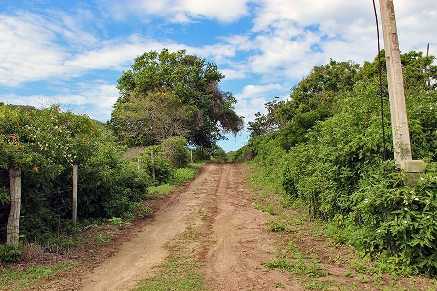 estrada de terra praia josé gonçalves