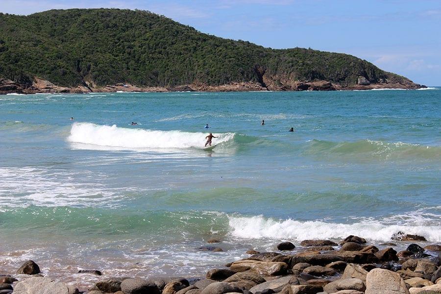 surfistas josé gonçalves